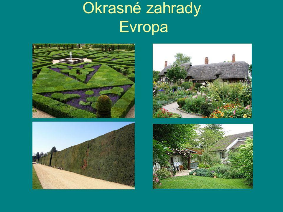 Podle zahradnického stylu Francouzská zahrada Japonská zahrada Čínská zahrada Okrasná zahrada Tropická zahrada Venkovská zahrada Zenová zahrada
