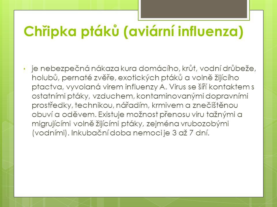 Chřipka ptáků (aviární influenza) je nebezpečná nákaza kura domácího, krůt, vodní drůbeže, holubů, pernaté zvěře, exotických ptáků a volně žijícího pt