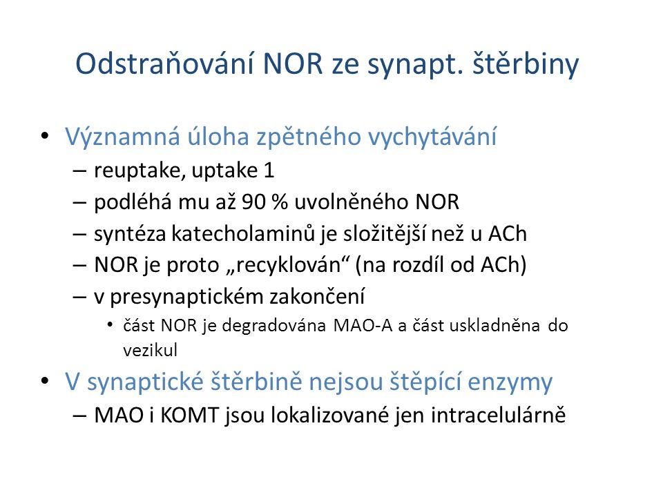 Odstraňování NOR ze synapt. štěrbiny Významná úloha zpětného vychytávání – reuptake, uptake 1 – podléhá mu až 90 % uvolněného NOR – syntéza katecholam
