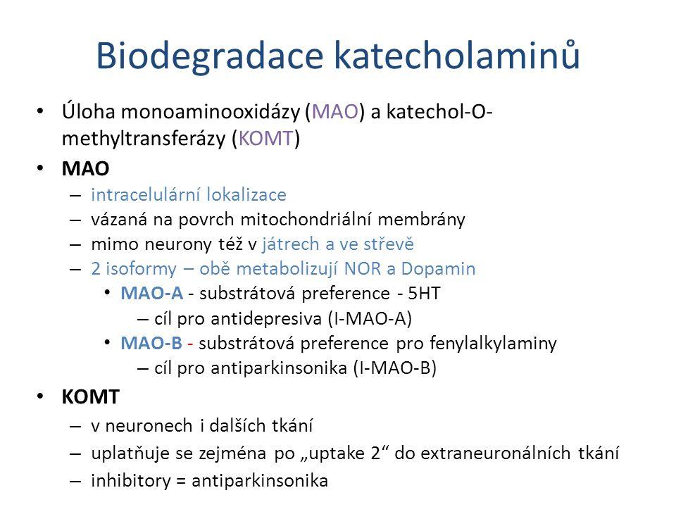 Biodegradace katecholaminů Úloha monoaminooxidázy (MAO) a katechol-O- methyltransferázy (KOMT) MAO – intracelulární lokalizace – vázaná na povrch mito