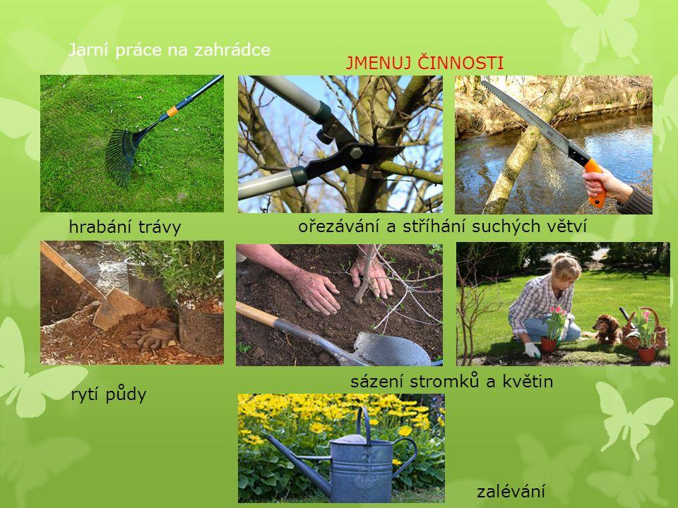 Jarní práce na zahrádce hrabání trávy ořezávání a stříhání suchých větví rytí půdy sázení stromků a květin zalévání JMENUJ ČINNOSTI