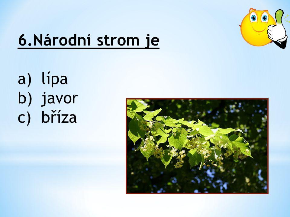 6.Národní strom je a)lípa b)javor c)bříza
