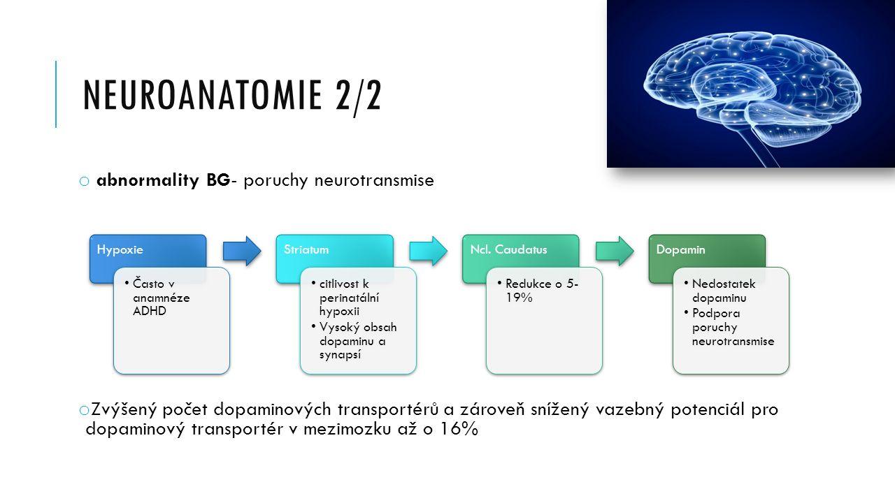 NEUROANATOMIE 2/2 o abnormality BG- poruchy neurotransmise o Zvýšený počet dopaminových transportérů a zároveň snížený vazebný potenciál pro dopaminový transportér v mezimozku až o 16% Hypoxie Často v anamnéze ADHD Striatum citlivost k perinatální hypoxii Vysoký obsah dopaminu a synapsí Ncl.