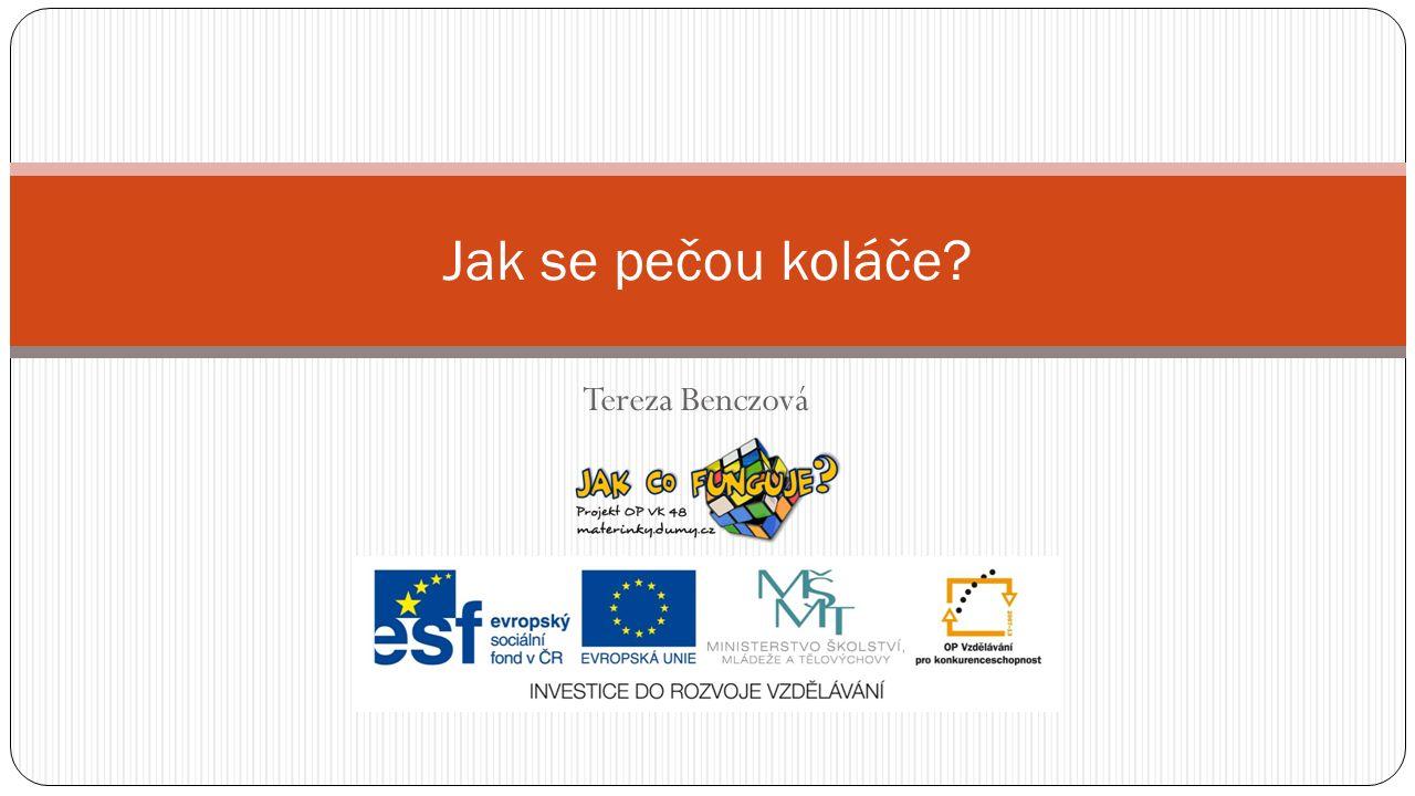 Práce s výukovým materiálem Projekt CZ.1.07/1.3.00/48.0075 je spolufinancován Evropským sociálním fondem a státním rozpo č tem Č eské republiky.