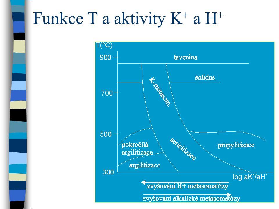 Funkce T a aktivity K + a H +