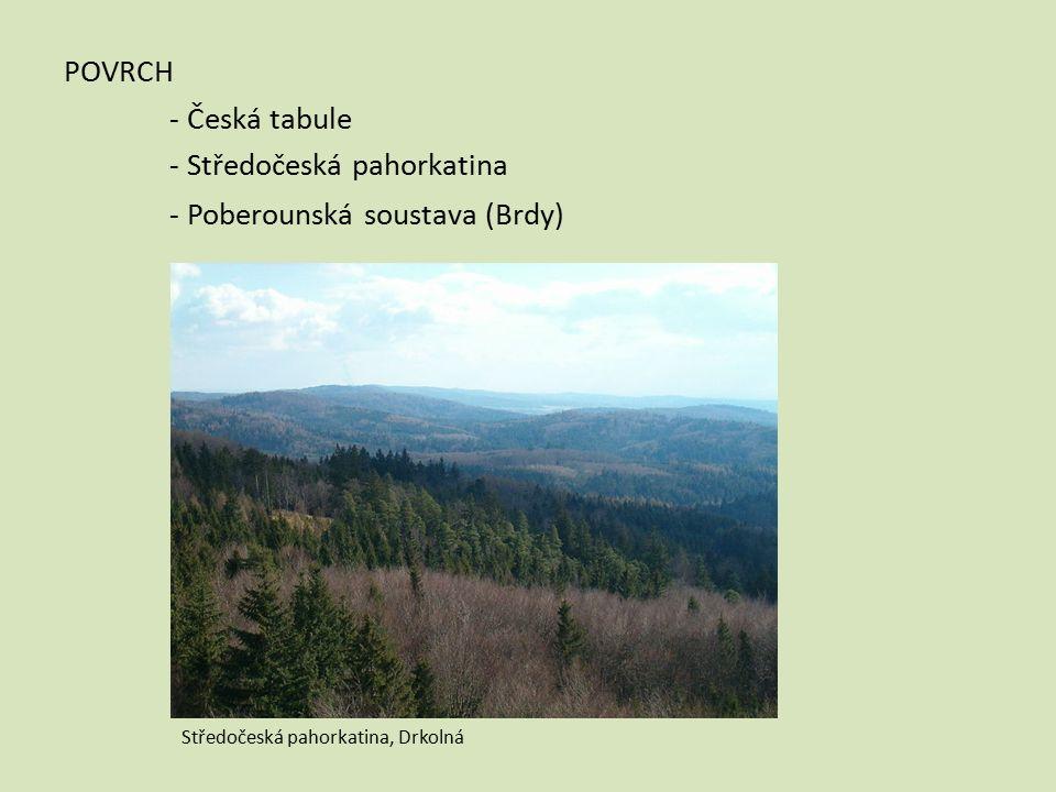 POVRCH - Česká tabule - Středočeská pahorkatina - Poberounská soustava (Brdy) Středočeská pahorkatina, Drkolná