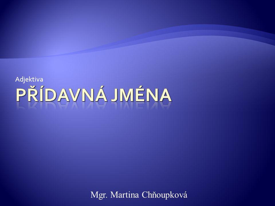 Adjektiva Mgr. Martina Chňoupková