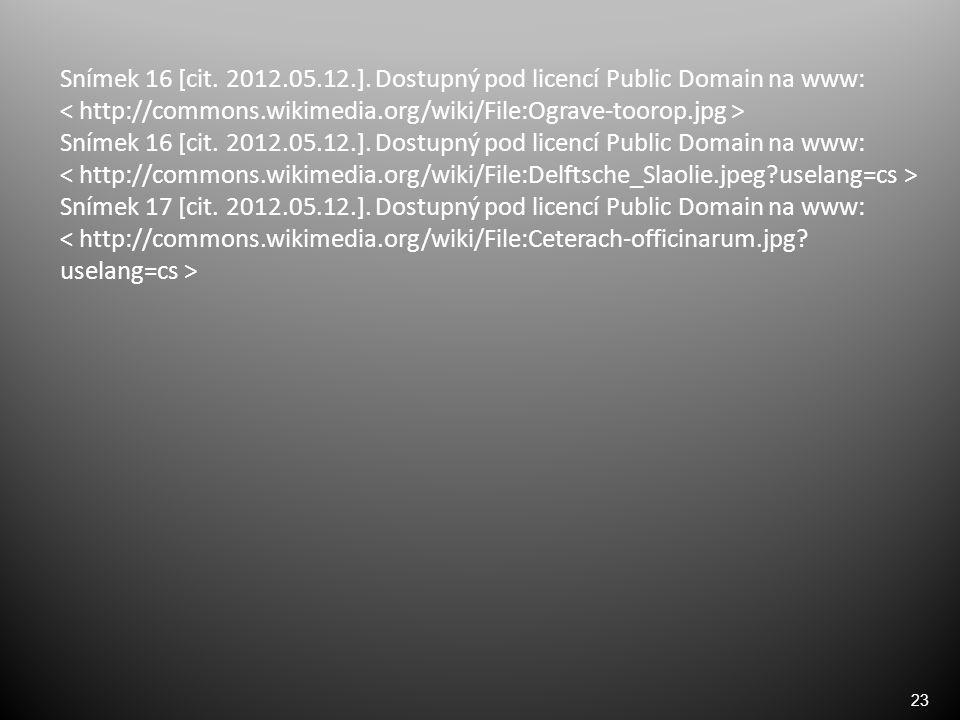 23 Snímek 16 [cit. 2012.05.12.]. Dostupný pod licencí Public Domain na www: ˂ http://commons.wikimedia.org/wiki/File:Ograve-toorop.jpg ˃ Snímek 16 [ci