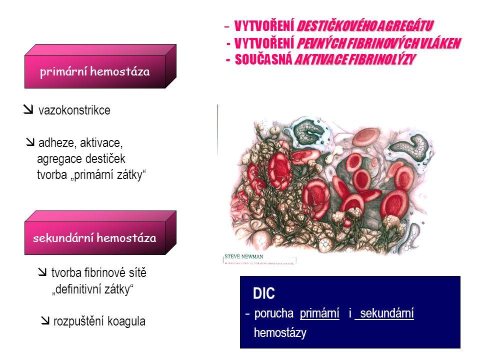 Schéma probíhající hemokoagulace a degradace fibrin polymerové sítě TF PKS protrombin fragment 1,2 tPA x PAI AT x Trombin Plasmin heparin fibrinopeptid A Fibri(noge)n Fibrin polymer FDP – D dimer TF – tkáňový faktor, PKS – plazmatický koagulační systém, AT – antitrombin, tPA – tkáňový aktivátor plazminogenu, PAI – inhibitor aktivátoru plazminogenu, FDP – degradační produkty fibri(noge)nu..