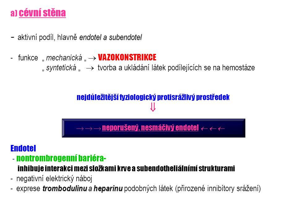 """a) cévní stěna endotel a subendotel - aktivní podíl, hlavně endotel a subendotel - funkce """" mechanická """"  VAZOKONSTRIKCE """" syntetická """"  tvorba a uk"""