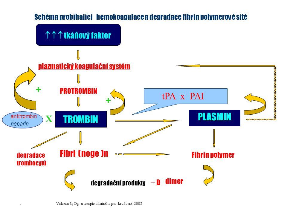 Schéma probíhajícíhemokoagulacea degradace fibrin polymerové sítě plazmatický koagulační systém PLASMIN Fibri(noge )n Fibrin polymer degradační produk