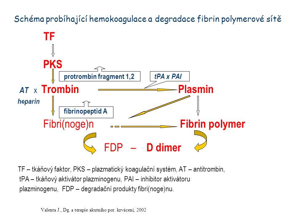 Schéma probíhající hemokoagulace a degradace fibrin polymerové sítě TF PKS protrombin fragment 1,2 tPA x PAI AT x Trombin Plasmin heparin fibrinopepti