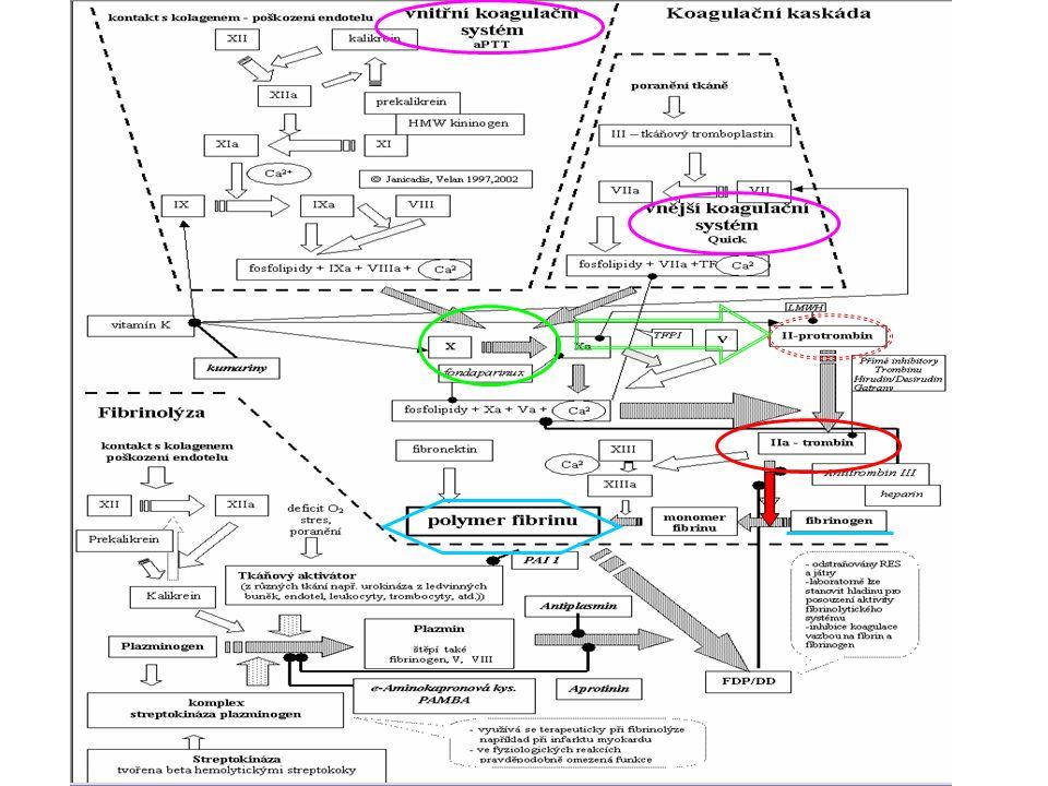 protrombínový čas, QUICK- aktivace cesty tkáňového faktoru fa VII, V, X, II, fibrinogen deficit vitaminu K úvodní – protrombotická f.