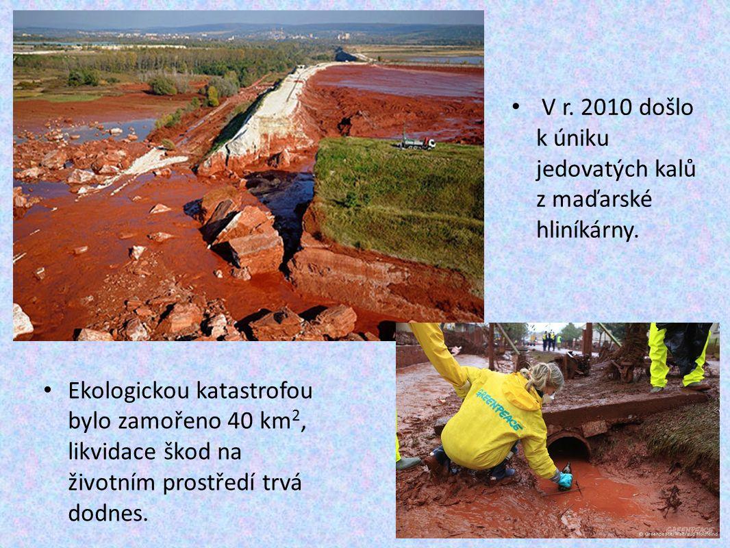 Ekologickou katastrofou bylo zamořeno 40 km 2, likvidace škod na životním prostředí trvá dodnes.