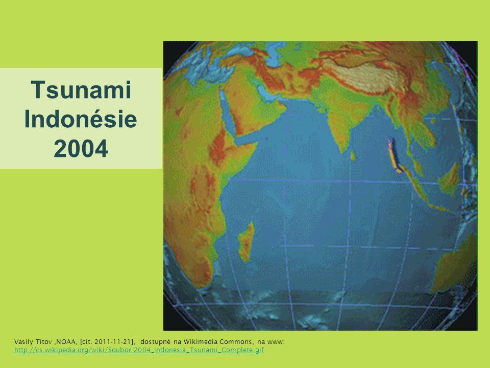 Tsunami Indonésie 2004 Vasily Titov,NOAA, [cit.