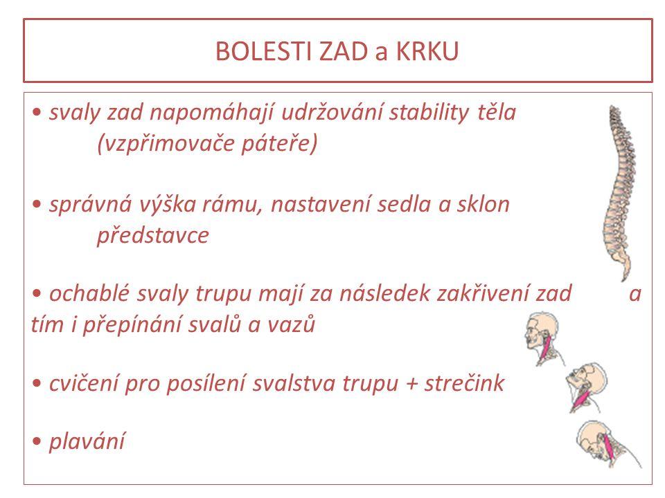 BOLESTI ZAD a KRKU svaly zad napomáhají udržování stability těla (vzpřimovače páteře) správná výška rámu, nastavení sedla a sklon představce ochablé s
