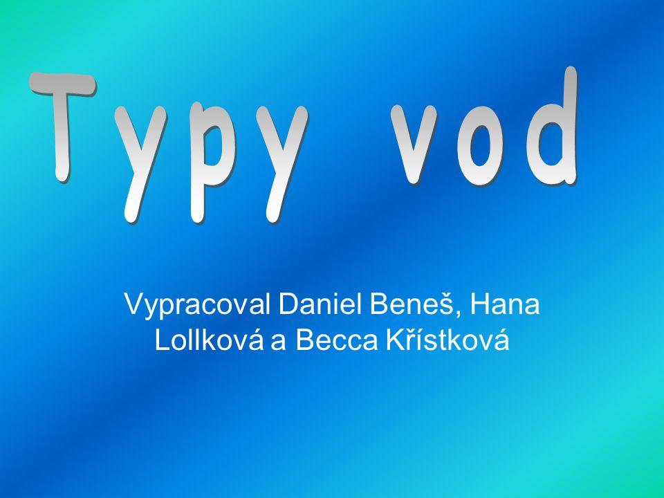 Vypracoval Daniel Beneš, Hana Lollková a Becca Křístková