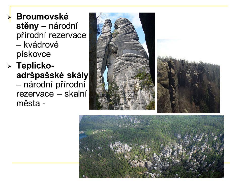  Broumovské stěny – národní přírodní rezervace – kvádrové pískovce  Teplicko- adršpašské skály – národní přírodní rezervace – skalní města -