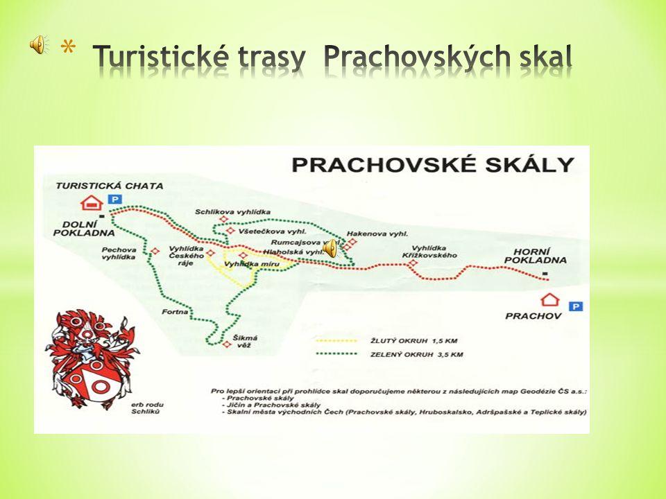 Do Prachovských skal se dostanete buď po turisticky značených stezkách.