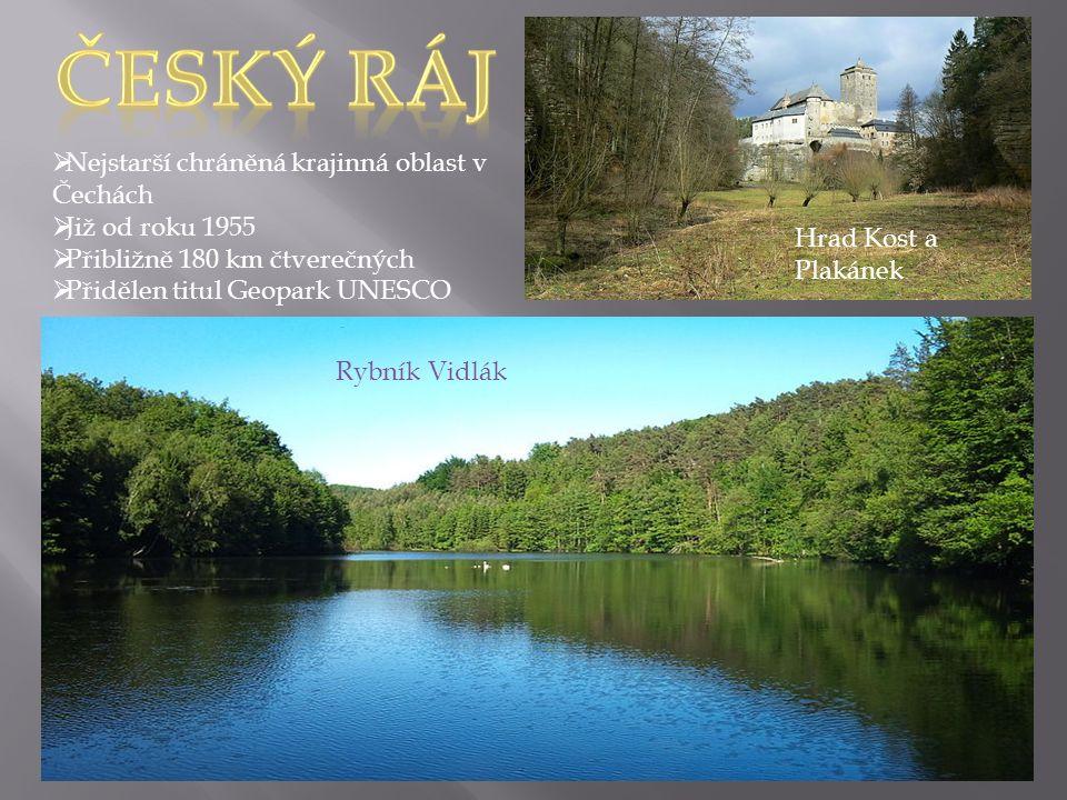 Rybník Vidlák Hrad Kost a Plakánek  Nejstarší chráněná krajinná oblast v Čechách  Již od roku 1955  Přibližně 180 km čtverečných  Přidělen titul Geopark UNESCO