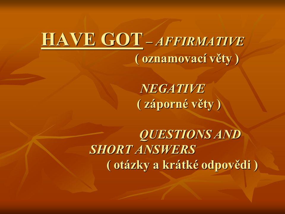HAVE GOT – AFFIRMATIVE ( oznamovací věty ) NEGATIVE ( záporné věty ) QUESTIONS AND SHORT ANSWERS ( otázky a krátké odpovědi )