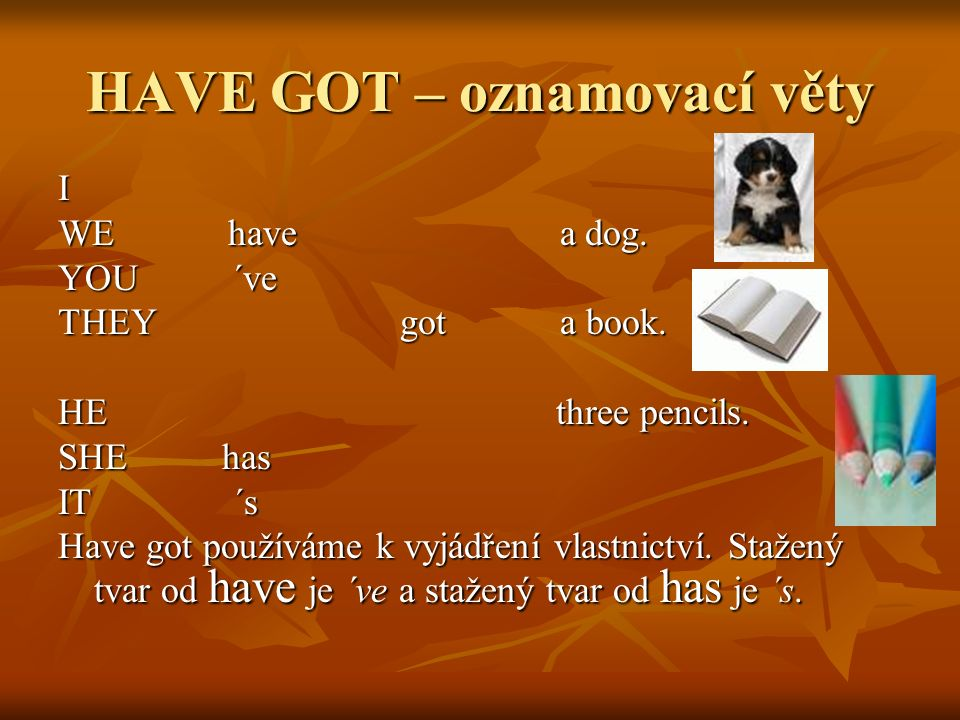HAVE GOT – oznamovací věty I WE have a dog. YOU ´ve THEY got a book.