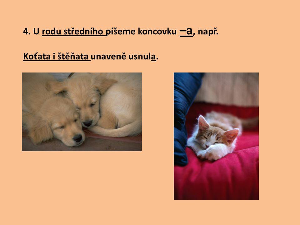 4. U rodu středního píšeme koncovku –a, např. Koťata i štěňata unaveně usnula.