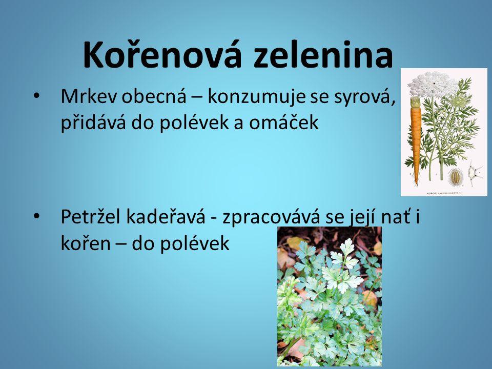 Kořenová zelenina Mrkev obecná – konzumuje se syrová, přidává do polévek a omáček Petržel kadeřavá - zpracovává se její nať i kořen – do polévek