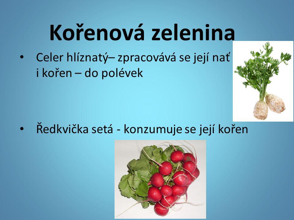 Kořenová zelenina Celer hlíznatý– zpracovává se její nať i kořen – do polévek Ředkvička setá - konzumuje se její kořen