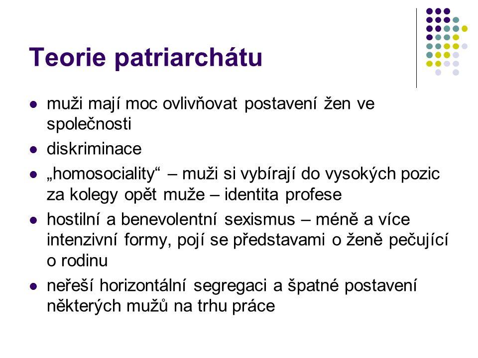 """Teorie patriarchátu muži mají moc ovlivňovat postavení žen ve společnosti diskriminace """"homosociality – muži si vybírají do vysokých pozic za kolegy opět muže – identita profese hostilní a benevolentní sexismus – méně a více intenzivní formy, pojí se představami o ženě pečující o rodinu neřeší horizontální segregaci a špatné postavení některých mužů na trhu práce"""