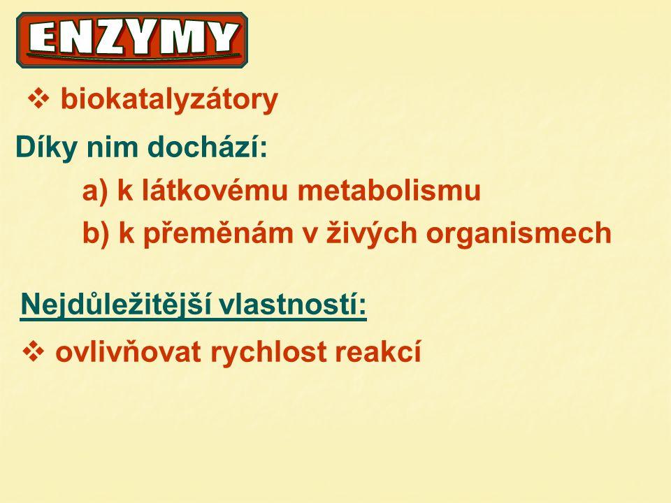 Proenzym (zymogen) neúčinná forma enzymu vlivem AKTIVÁTORU …..