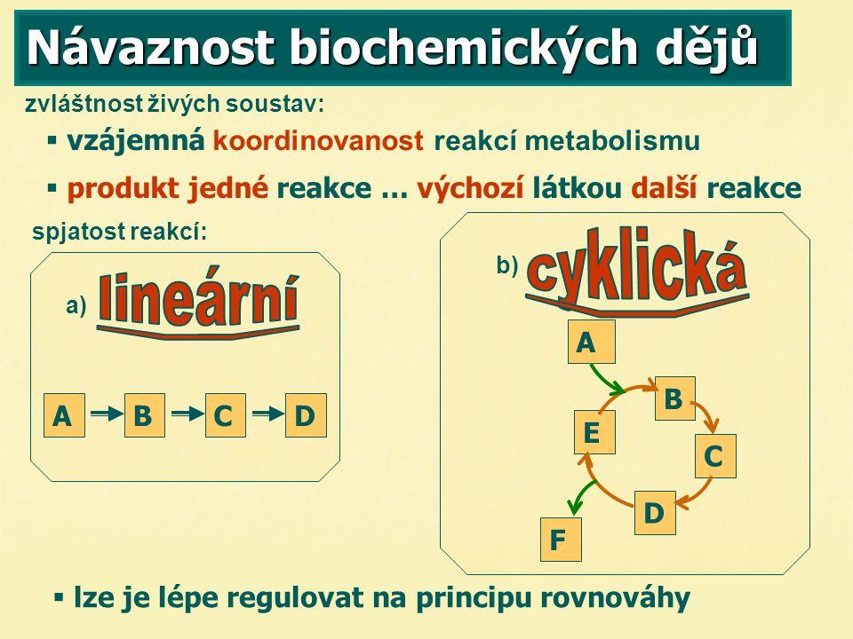 Návaznost biochemických dějů   lze je lépe regulovat na principu rovnováhy zvláštnost živých soustav:   vzájemná koordinovanost reakcí metabolismu  p produkt jedné reakce … výchozí látkou další reakce spjatost reakcí: a) b) A B C D E F BCDA