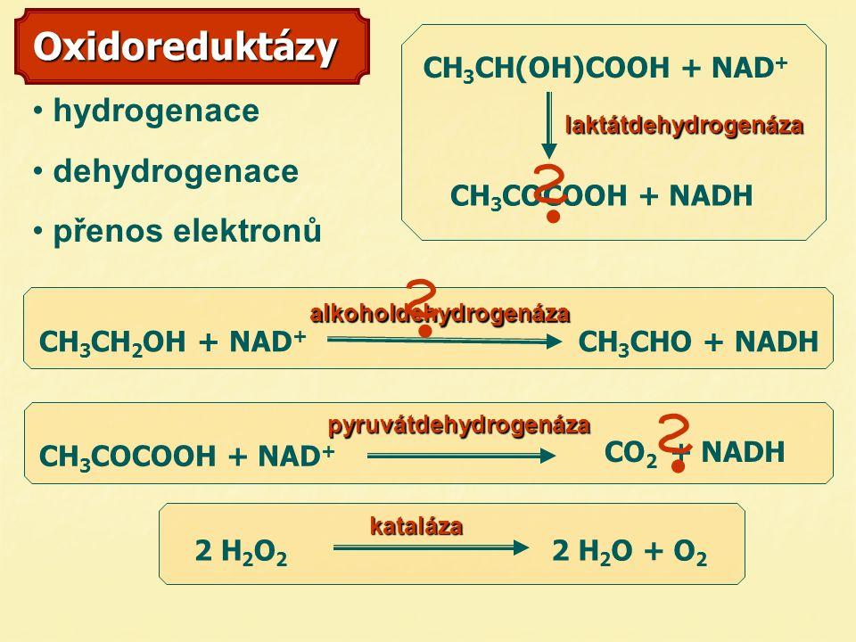 Oxidoreduktázy hydrogenace dehydrogenace přenos elektronů laktátdehydrogenáza alkoholdehydrogenáza CH 3 CH 2 OH + NAD + CH 3 CHO + NADH CH 3 COCOOH + NADH CO 2 + NADH 2 H 2 O 2 2 H 2 O + O 2 kataláza CH 3 CH(OH)COOH + NAD + CH 3 COCOOH + NAD +pyruvátdehydrogenáza 