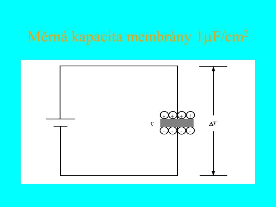 Měrná kapacita membrány 1  F/cm 2