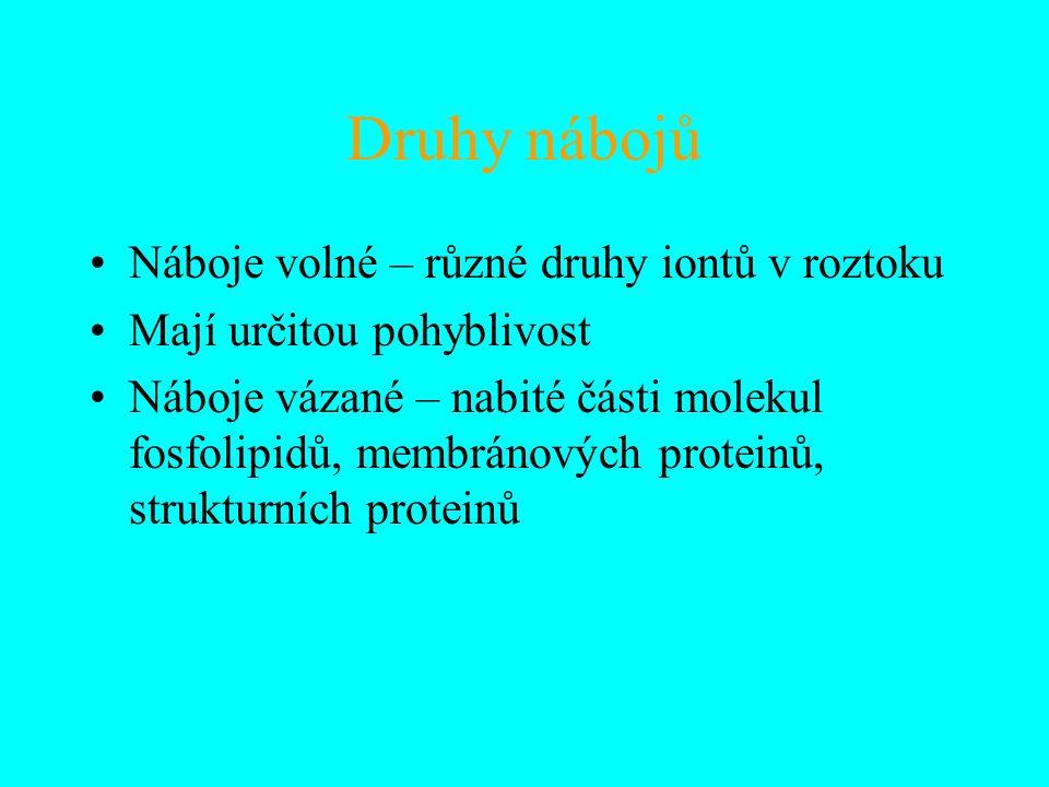 Druhy nábojů Náboje volné – různé druhy iontů v roztoku Mají určitou pohyblivost Náboje vázané – nabité části molekul fosfolipidů, membránových proteinů, strukturních proteinů