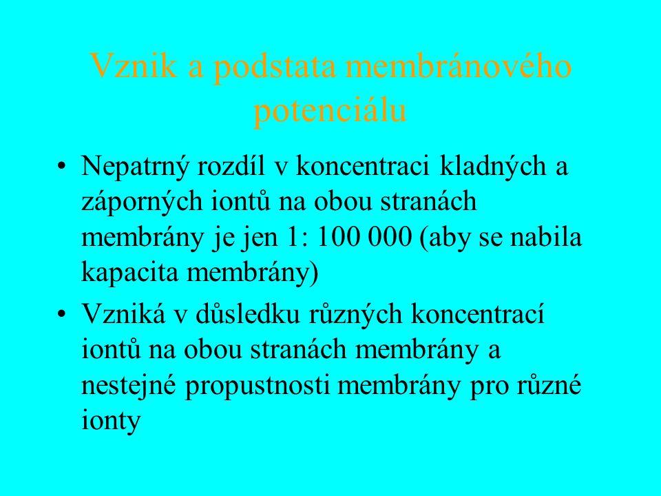 Vznik a podstata membránového potenciálu Nepatrný rozdíl v koncentraci kladných a záporných iontů na obou stranách membrány je jen 1: 100 000 (aby se nabila kapacita membrány) Vzniká v důsledku různých koncentrací iontů na obou stranách membrány a nestejné propustnosti membrány pro různé ionty