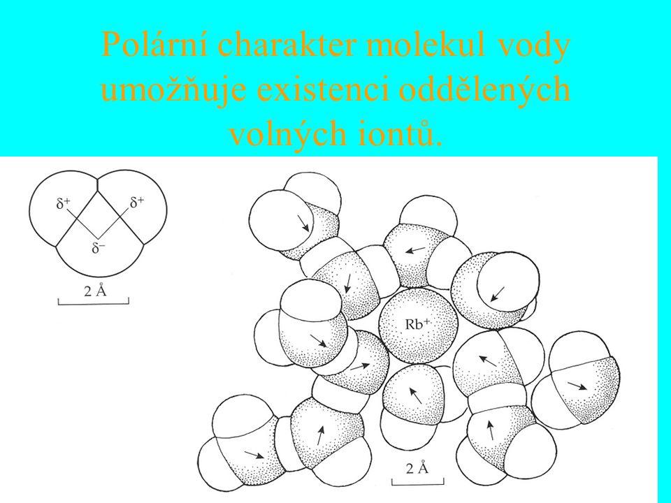 Polární charakter molekul vody umožňuje existenci oddělených volných iontů.