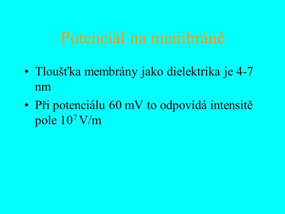Potenciál na membráně Tloušťka membrány jako dielektrika je 4-7 nm Při potenciálu 60 mV to odpovídá intensitě pole 10 7 V/m