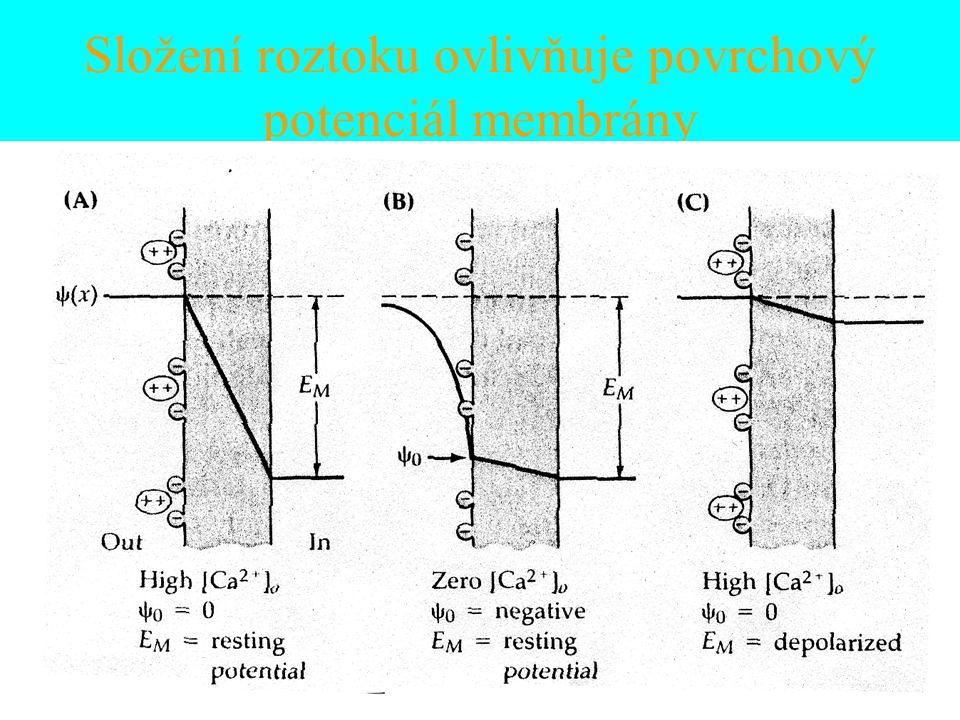 Složení roztoku ovlivňuje povrchový potenciál membrány