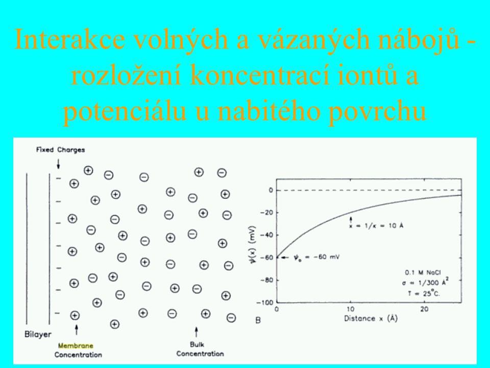 Interakce volných a vázaných nábojů - rozložení koncentrací iontů a potenciálu u nabitého povrchu