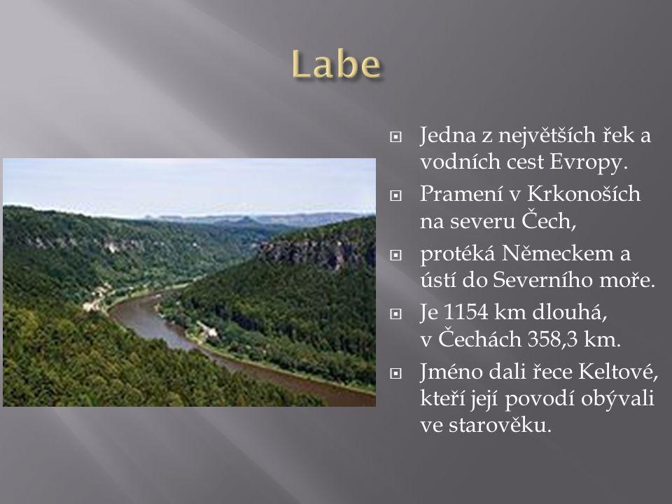  Jedna z největších řek a vodních cest Evropy.  Pramení v Krkonoších na severu Čech,  protéká Německem a ústí do Severního moře.  Je 1154 km dlouh