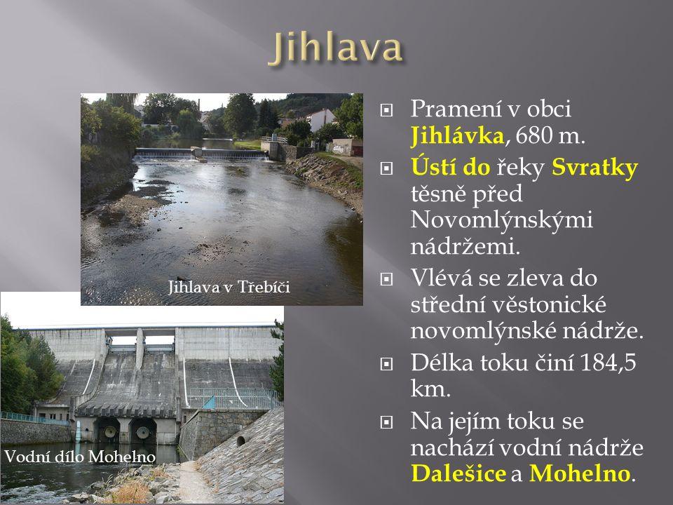  Pramení v obci Jihlávka, 680 m.  Ústí do řeky Svratky těsně před Novomlýnskými nádržemi.