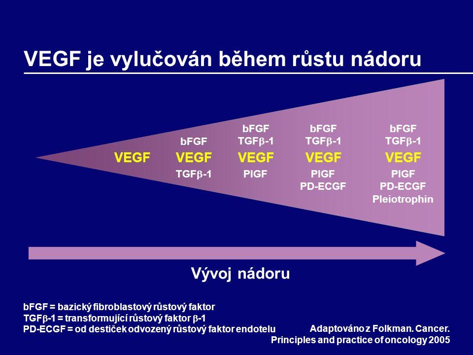 VEGF je vylučován během růstu nádoru Adaptováno z Folkman.