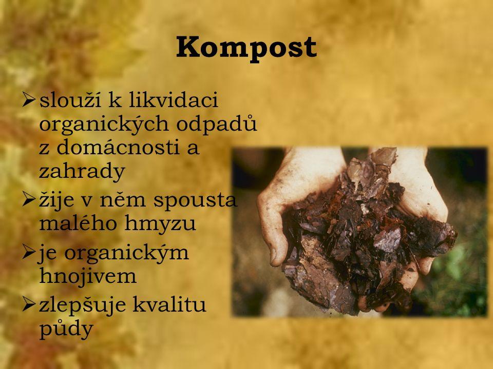Kompost  slouží k likvidaci organických odpadů z domácnosti a zahrady  žije v něm spousta malého hmyzu  je organickým hnojivem  zlepšuje kvalitu půdy