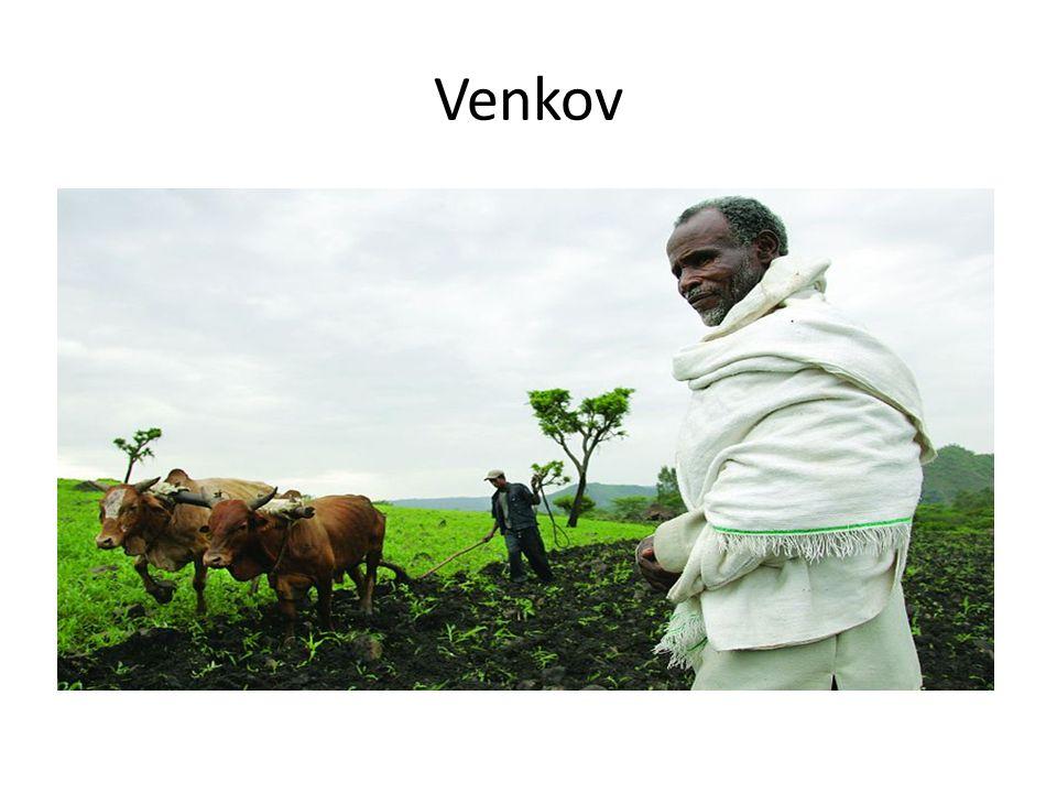Venkov