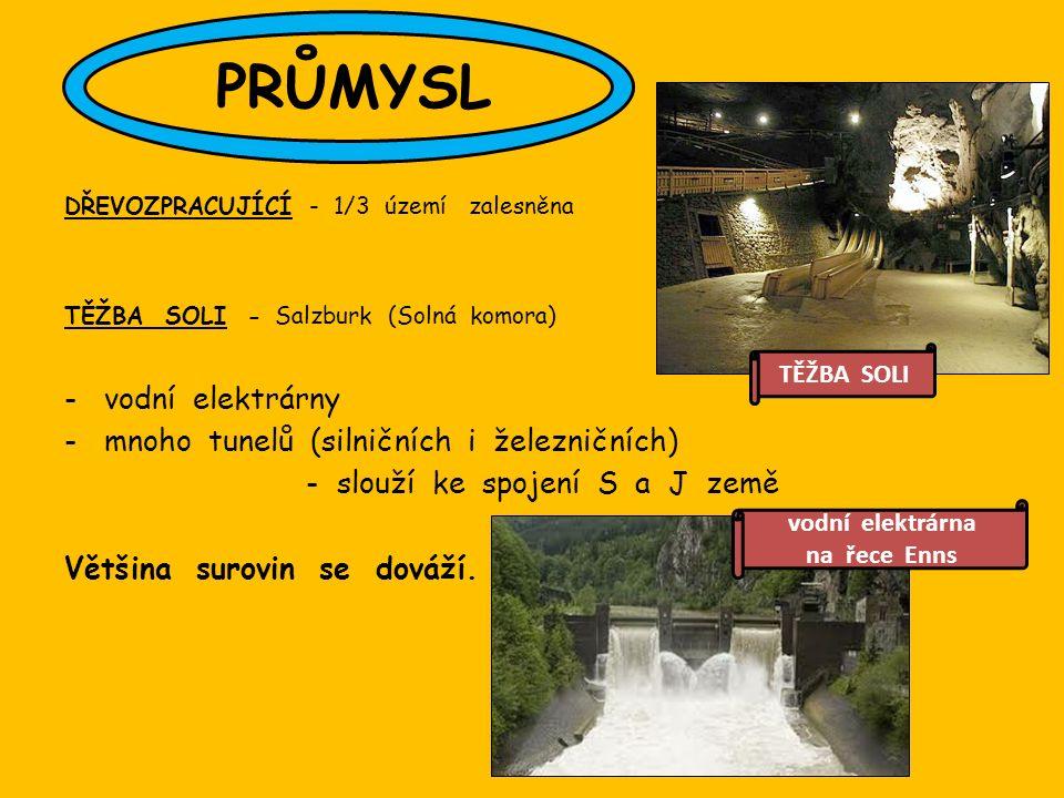 DŘEVOZPRACUJÍCÍ - 1/3 území zalesněna TĚŽBA SOLI - Salzburk (Solná komora) -vodní elektrárny -mnoho tunelů (silničních i železničních) - slouží ke spojení S a J země Většina surovin se dováží.