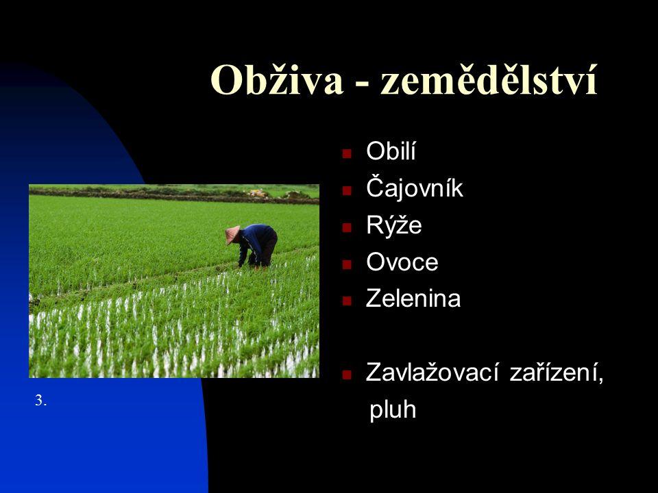 Obživa - zemědělství Obilí Čajovník Rýže Ovoce Zelenina Zavlažovací zařízení, pluh 3.