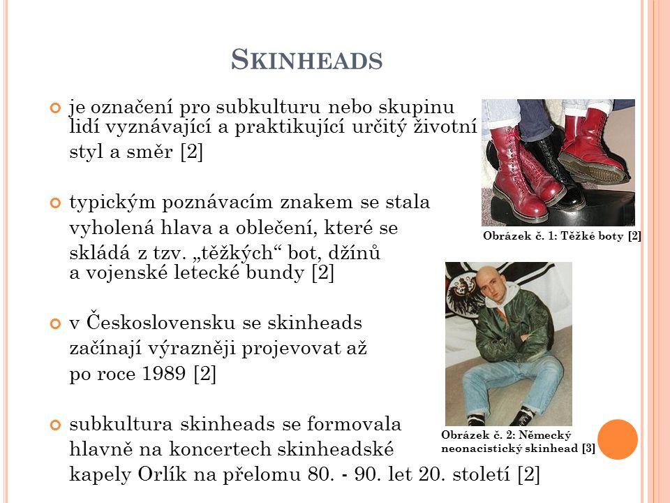 S KINHEADS je označení pro subkulturu nebo skupinu lidí vyznávající a praktikující určitý životní styl a směr [2] typickým poznávacím znakem se stala vyholená hlava a oblečení, které se skládá z tzv.