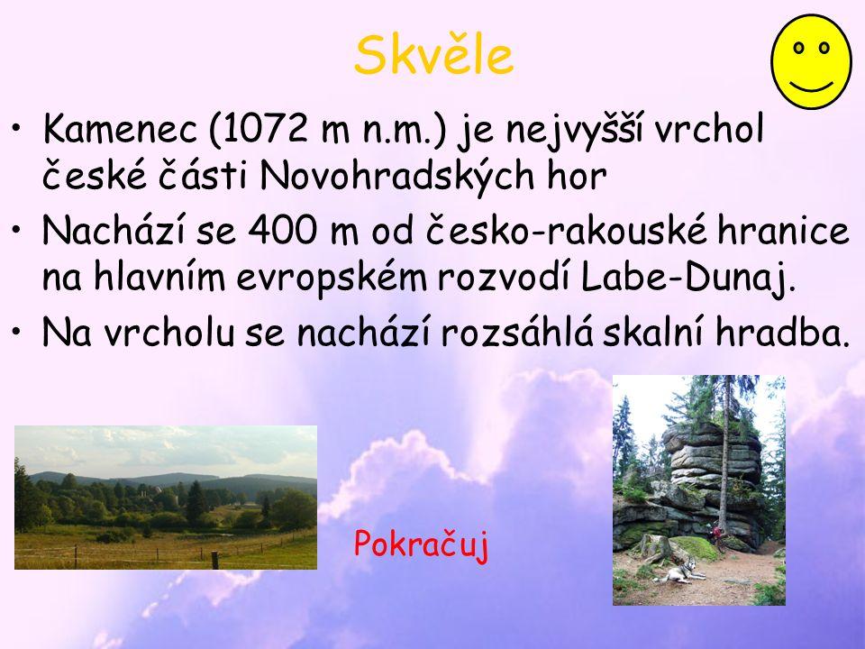 Skvěle Kamenec (1072 m n.m.) je nejvyšší vrchol české části Novohradských hor Nachází se 400 m od česko-rakouské hranice na hlavním evropském rozvodí Labe-Dunaj.