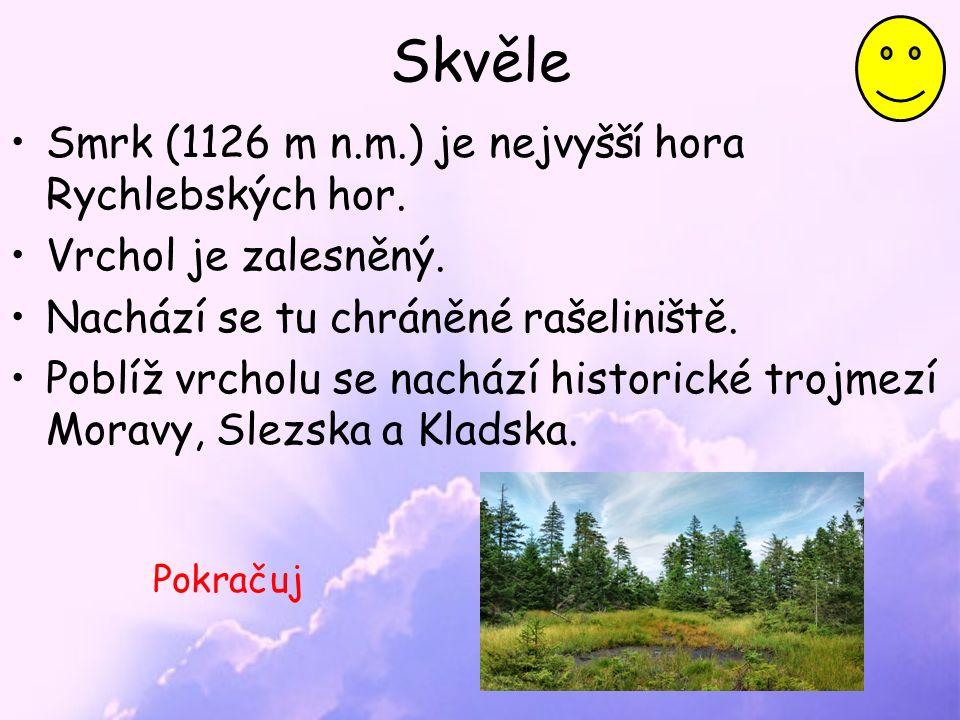 Skvěle Smrk (1126 m n.m.) je nejvyšší hora Rychlebských hor.